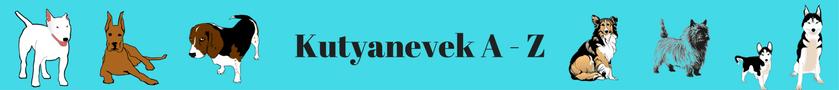 Kutyanevek A - Z banner