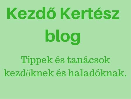 Kezdő Kertész blog