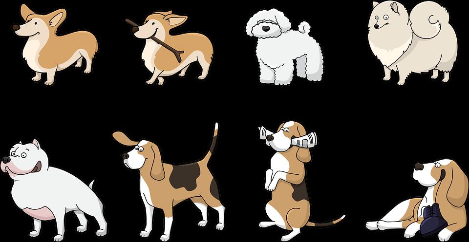Kutyanevek